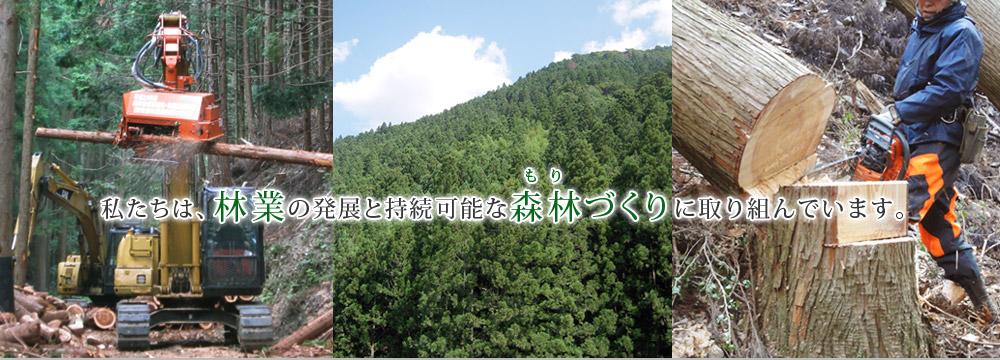 徳島県森林組合連合会 -トップペ...